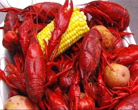 Traditionen i Cajunköket i Louisiana ger kryddor av alla slag utom dill eftersom dillen är dyrare än kräftor i södra USA. Istället mixar de gärna en kryddblandning av cayennepeppar, paprikapulver, röda och gröna chilifrukter, vitlöksklyftor och saft
